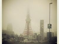 satoshi_hosoya_tokyo tower_no3