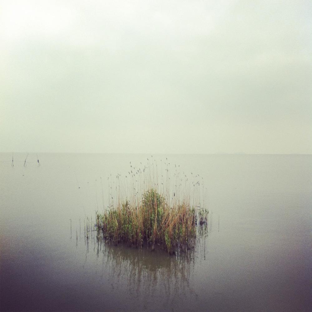Tai_lake-1